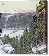 Pines In Winter Acrylic Print by George Gardner Symons