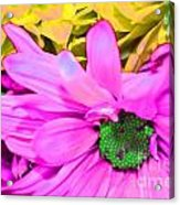 Pink And Green Flowers Acrylic Print