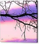 Pink And Purple Sunset Acrylic Print