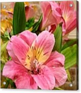 Pink And Yellow Flowers Acrylic Print