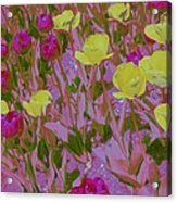 Pink And Yellow Tulips Pop Art Acrylic Print