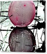 Pink Balloon Reflecting Acrylic Print
