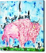 Pink Bison And Black Cats Acrylic Print