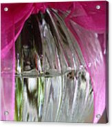 Pink Bowed Glass Acrylic Print