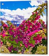 Pink Bush Acrylic Print by Lisa Cortez