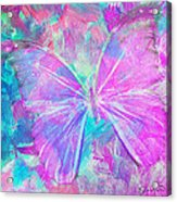 Pink Butterfly By Jan Marvin Acrylic Print