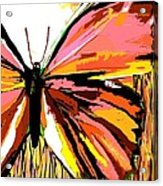 Pink Butterfly Acrylic Print