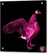 Pink Canada Goose Pop Art - 7585 - Bb  Acrylic Print