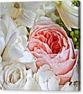 Pink English Rose Among White Roses Art Prints Acrylic Print
