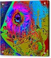 Pink Eye Acrylic Print