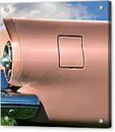 Pink Fins Acrylic Print by Bill Cannon