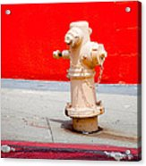 Pink Fire Hydrant Acrylic Print