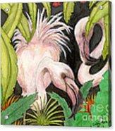 Pink Flamingos Jungle Cathy Peek Tropical Bird Art Acrylic Print