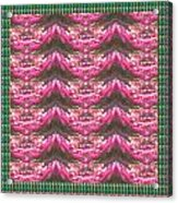 Pink Flower Petal Based Crystal Beads In Sync Wave Pattern Acrylic Print