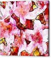 Pink Flowers 2 Acrylic Print