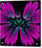 Pink Fractal Flower Explosion Acrylic Print