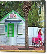Pink Lady And The Conch Shop  Acrylic Print by Rebecca Korpita