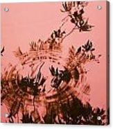 Pink Level Acrylic Print