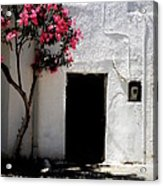 Pink Oleander By The Door Acrylic Print