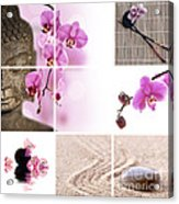 Pink Orchid And Buddha Collage Acrylic Print