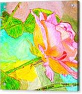 Pink Peach Power Acrylic Print
