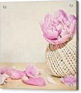 Pink Peony And The Thread Ball Acrylic Print