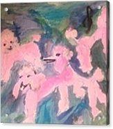 Pink Poodle Polka Acrylic Print