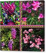 Pink Purple Flowers Captured At The Riverside Ridge At Oakville Ontario Canada Collage Beautiful     Acrylic Print