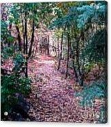 Pink Road Acrylic Print