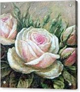 Pink Rose And Rose Buds II Acrylic Print