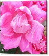 Pink Rose Painting  Acrylic Print