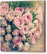 Pink Rosebuds Old Photo Acrylic Print