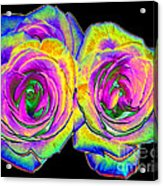 Pink Roses With Colored Foil Effects Acrylic Print
