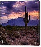Pink Skies At The Superstitions Acrylic Print