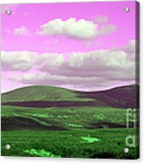 Pink Sky Acrylic Print by Jo Collins