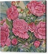 Pink Splendor Acrylic Print
