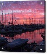 Pink Summer Sunset  Acrylic Print