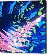 Pink Tea Leaf Erickson Acrylic Print