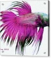 Pink Tropical Fish Acrylic Print