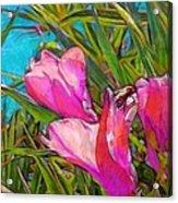 Pink Tropical Flower With Honeybee - Vertical Acrylic Print