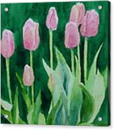 Pink Tulips Colorful Flowers Garden Art Original Watercolor Painting Artist K. Joann Russell Acrylic Print
