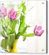 Pink Tulips In Yellow Vase Acrylic Print