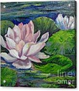 Pink Water Lilies By Barbara Haviland Acrylic Print