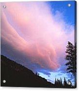 Pink Yellowstone Sunset Acrylic Print