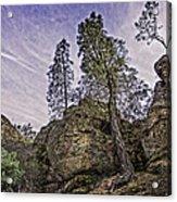 Pinnacles And Trees Acrylic Print