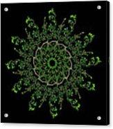 Pinwheel I Acrylic Print