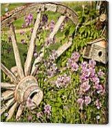 Pioneer Blossoms - Casper Wyoming Acrylic Print