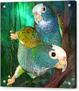 Pionus In Paradise Acrylic Print