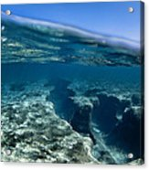Pipe Reef. Acrylic Print