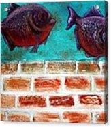 Piranha Acrylic Print